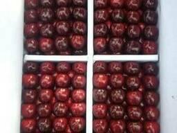 Cherry Черешня (Авиа перевозки) - фото 2