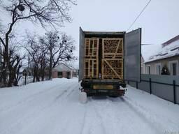 Дрова колотые в Израиль Хайфа экспорт из Украины контейнером - фото 2