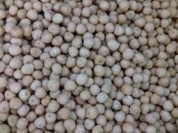 Chickpeas 7 mm