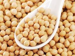 We are offering chickpeas, whole peas, sunflower seeds for confectioeners, split peas